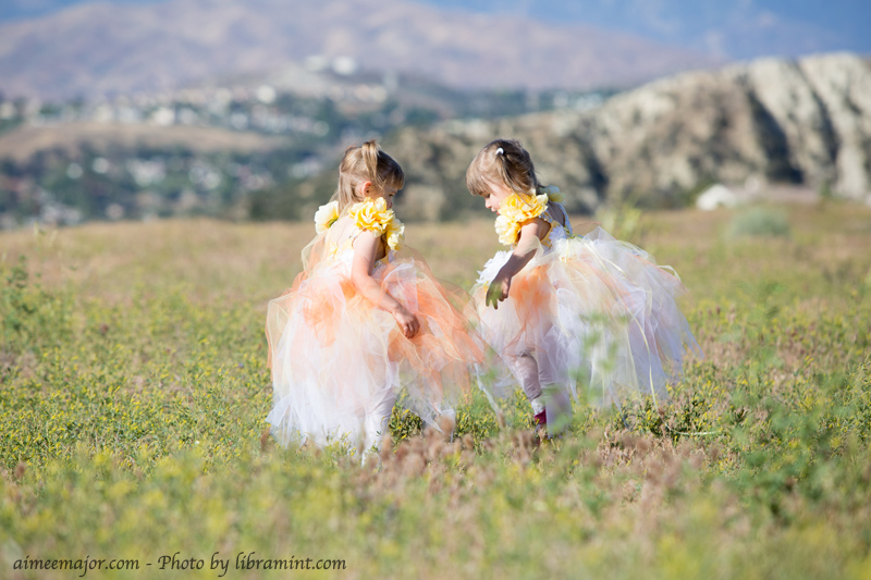 Twin Flower Fairy Tulle Dresses
